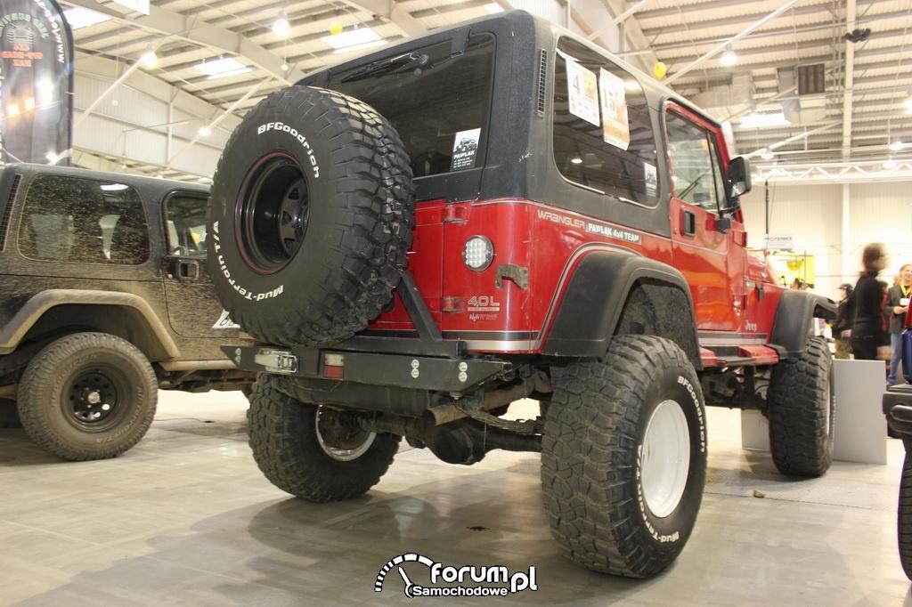 Jeep Wrangler 4.0L, tył