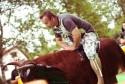 Ujeżdżanie byka, ASTW