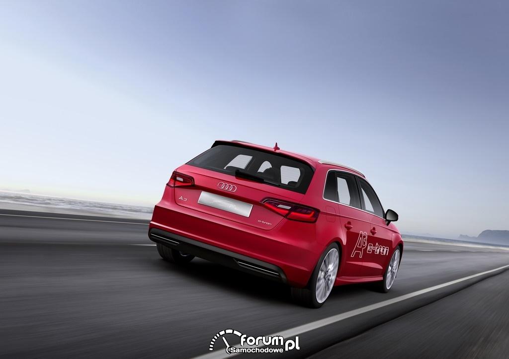 Audi A3 e-tron, tył