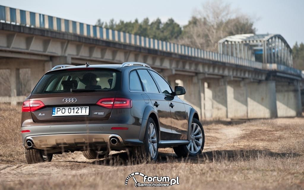 Audi A4 allroad quattro, tył