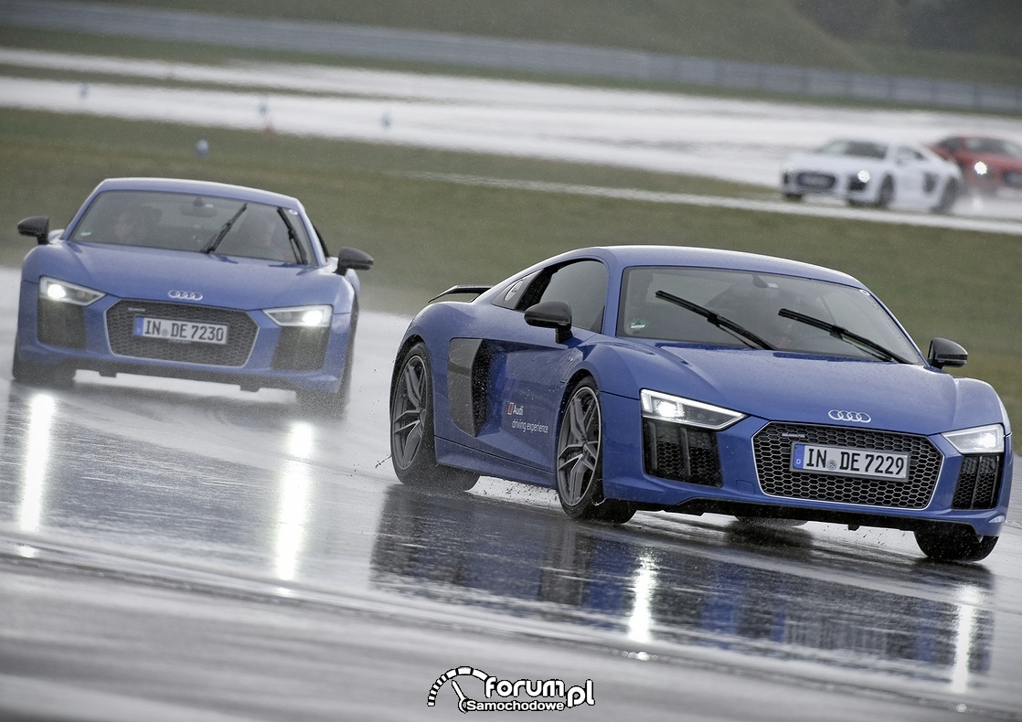 Audi driving experience, Audi R8
