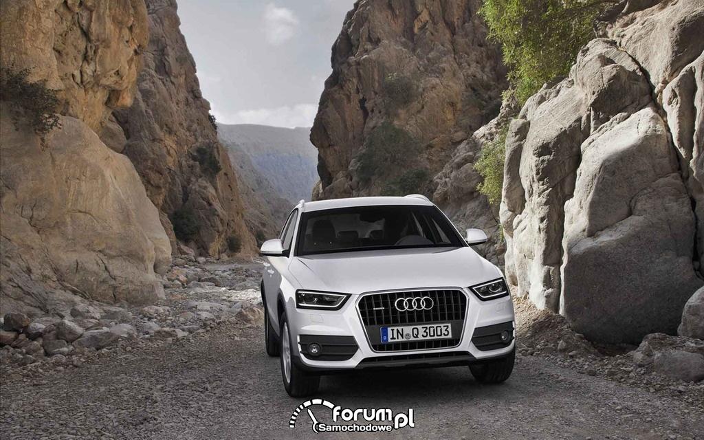 Audi Q1 Compact SUV - biały w górach