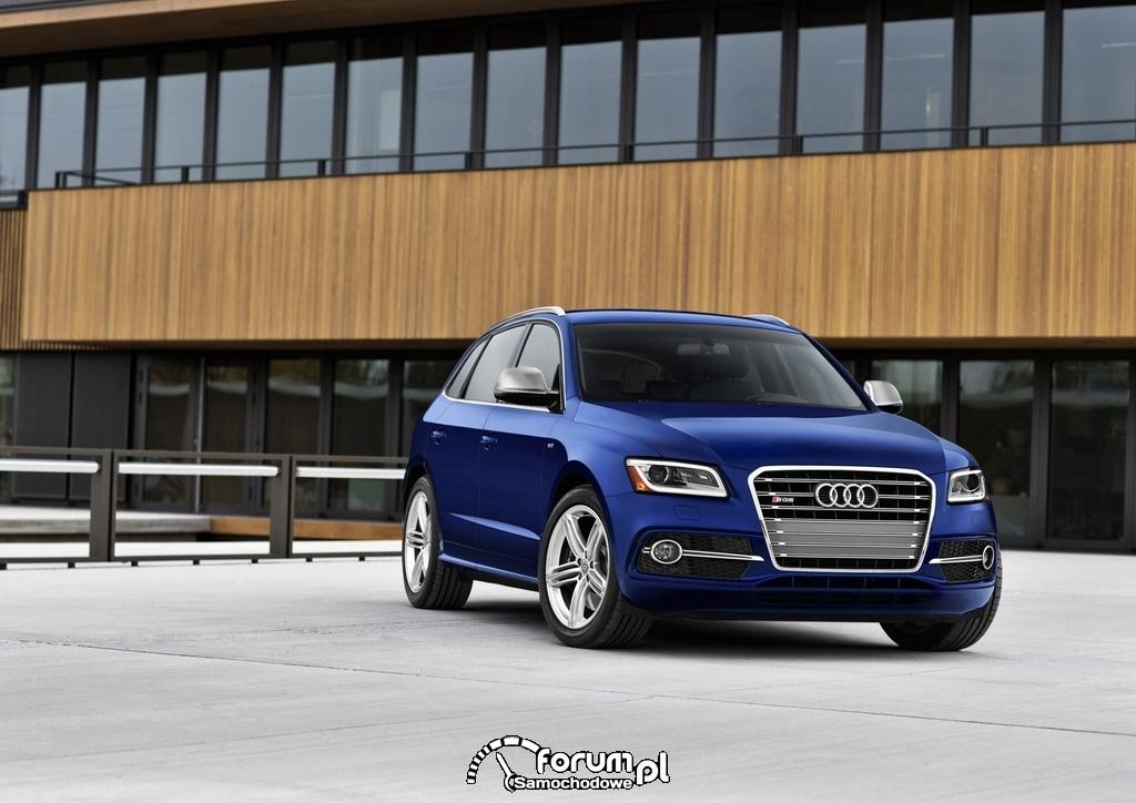 Audi SQ5 z silnikiem benzynowym, dynamika i moc 354 KM