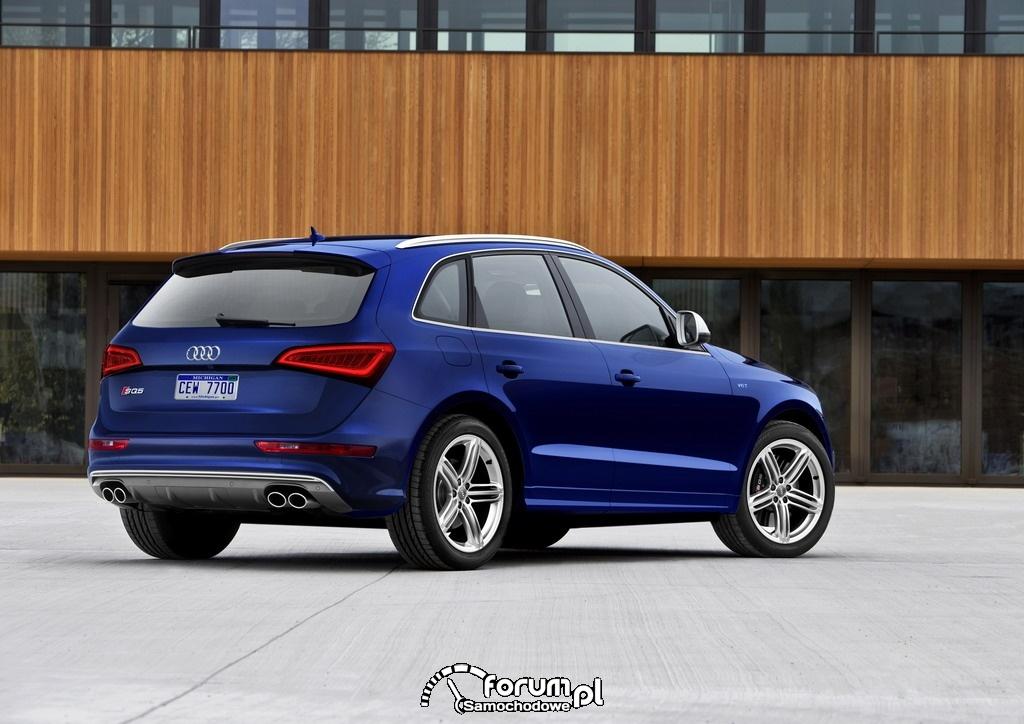Audi SQ5 z silnikiem benzynowym, dynamika i moc 354 KM, tył