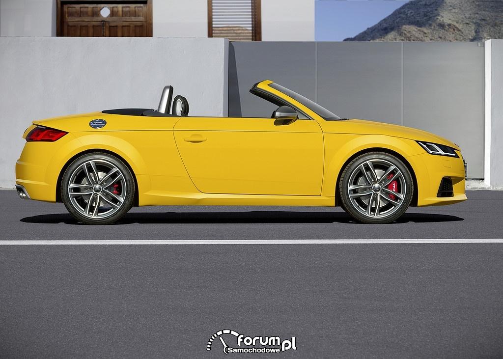 Audi TTS Roadster, bok