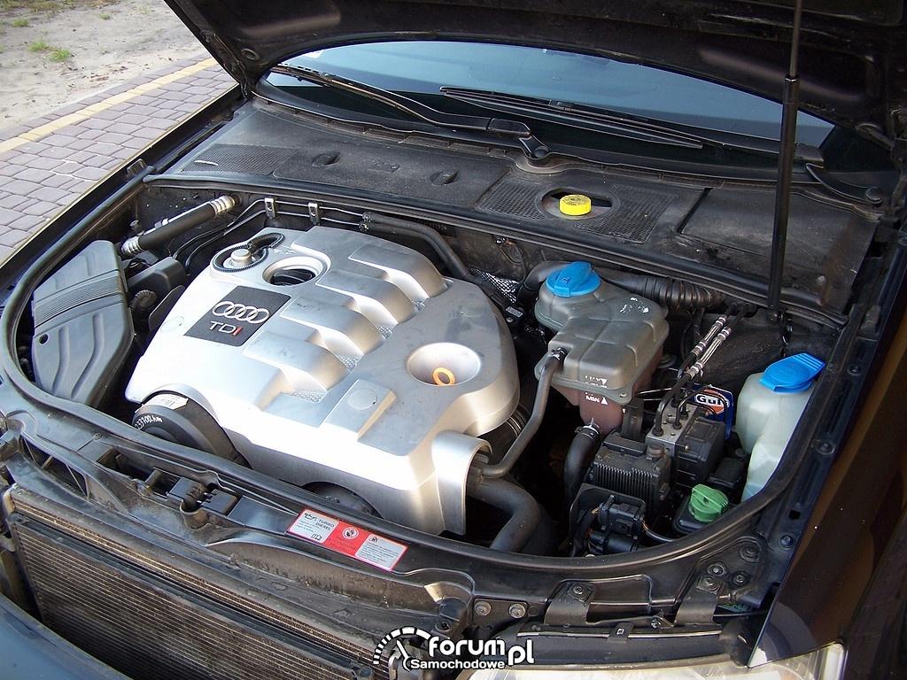 Silnik 1.9 TDI AVF 131km, Audi A4 B6
