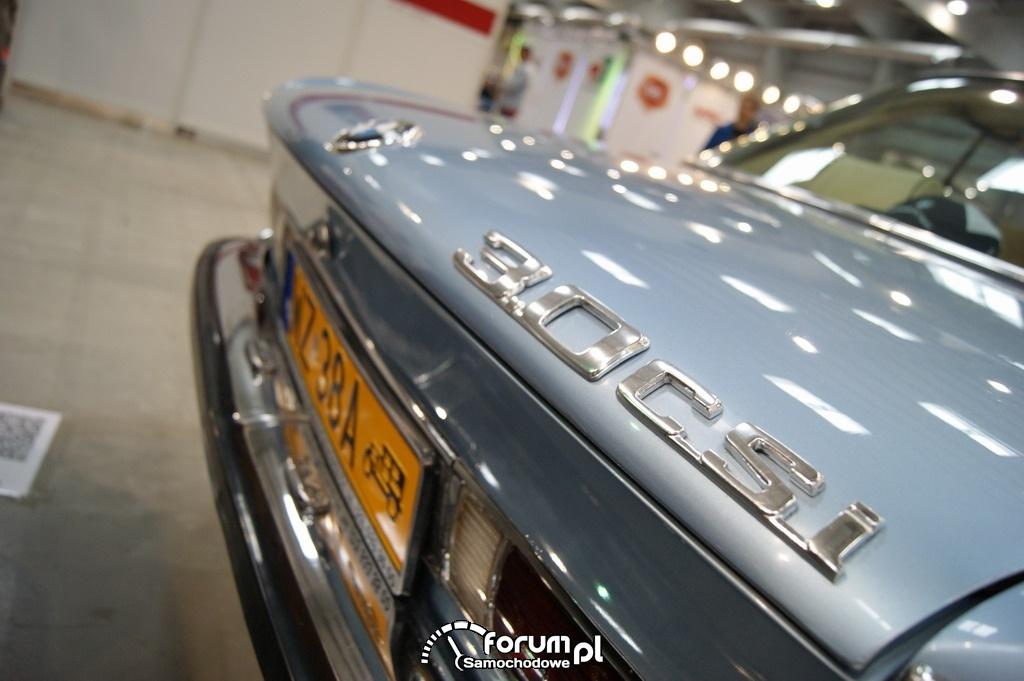 BMW 3.0 CSi, logo