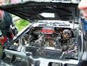 Autosacrum 2008