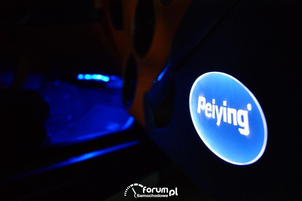 Logo Peiying na drzwiach, Nissan 350z