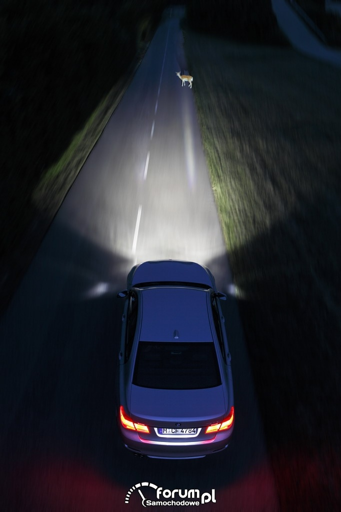 BMW Connected Drive - Night Vision, dynamiczne oświetlenie punktowe, 2