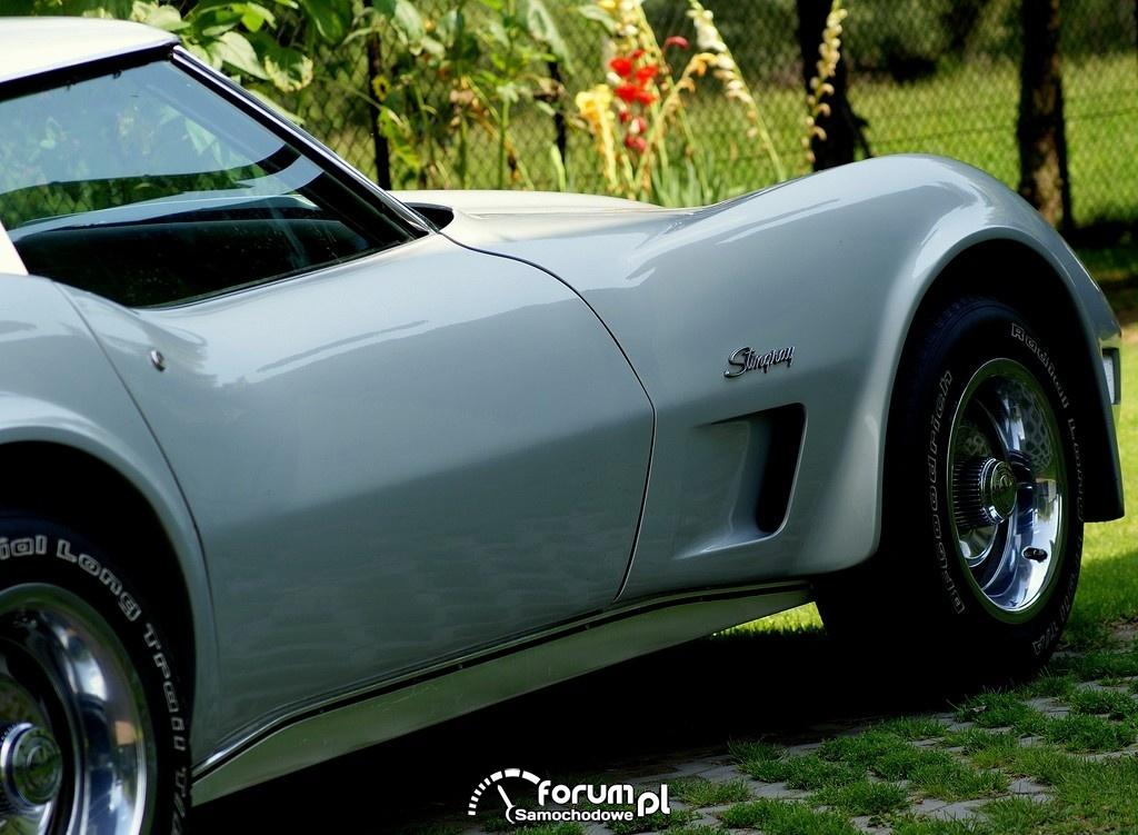 Chevrolet Corvette C3 Stingray, 1