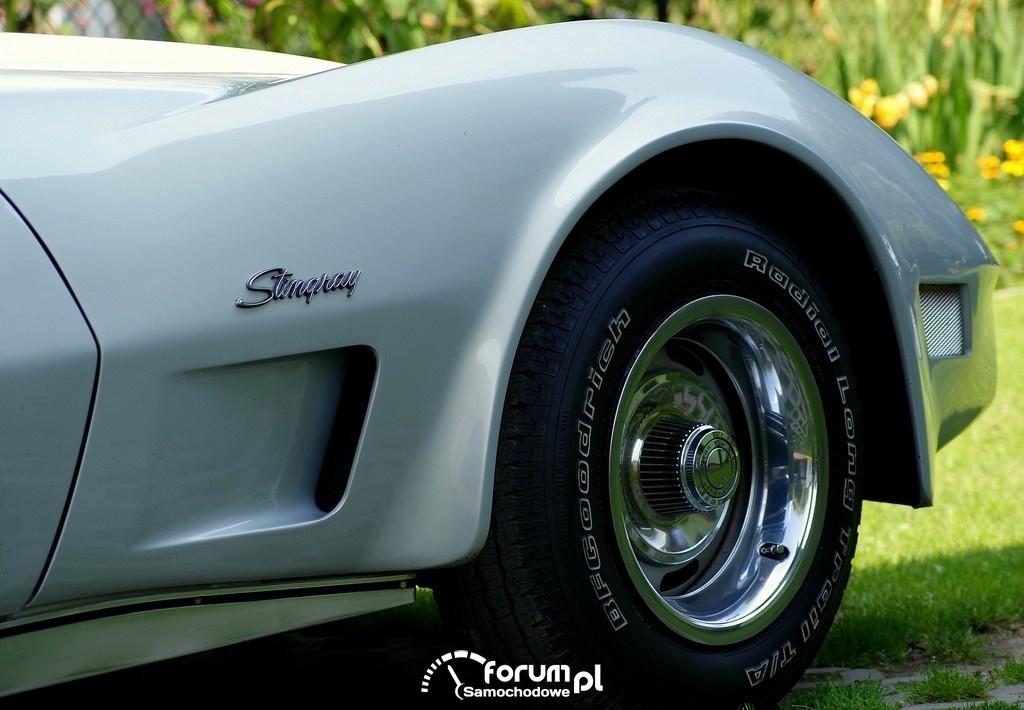 Chevrolet Corvette C3 Stingray, 3