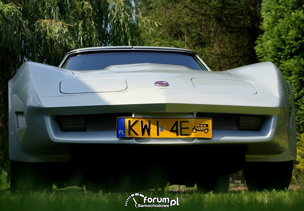 Chevrolet Corvette C3 Stingray, 4
