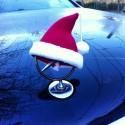 Mercedes w czapce Mikołaja