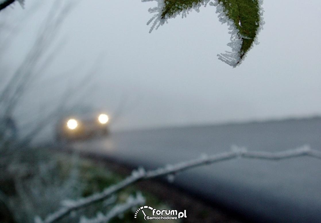 Czarny lód na drodze, szron