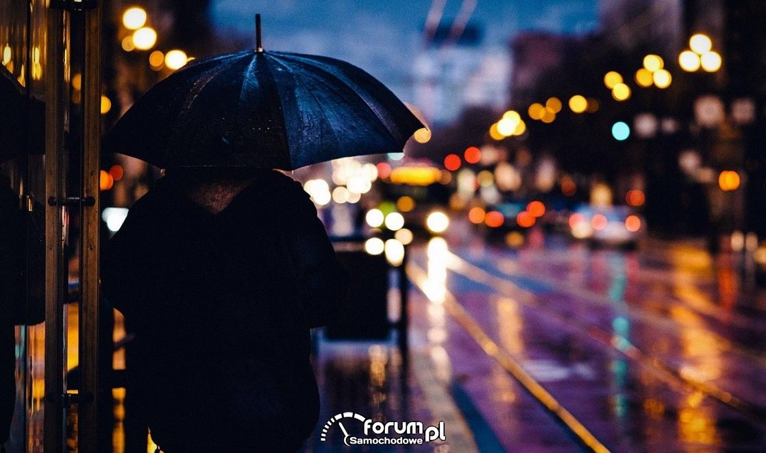 Deszcz, miasto, noc, ulica