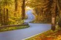 Droga bez namalowanych pasów, kręta droga