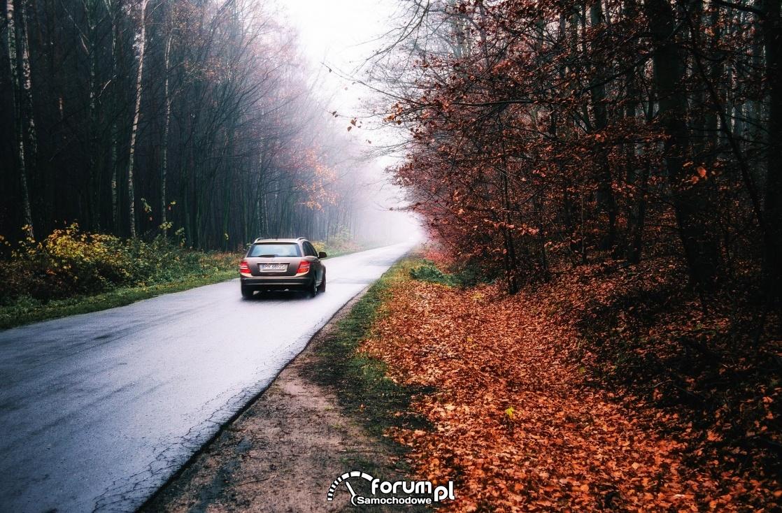 Mamy już jesień na drogach - na co trzeba uważać?