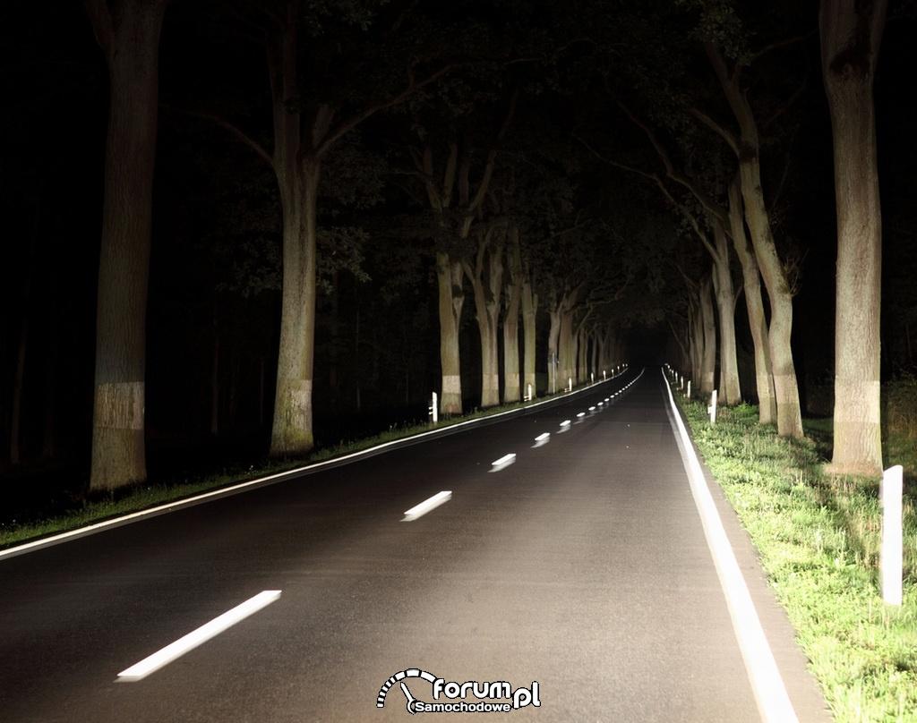 Droga oświetlona w nocy światłami drogwymi