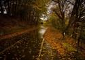 Pięć rzeczy, o których powinien pamiętać kierowca jesienią