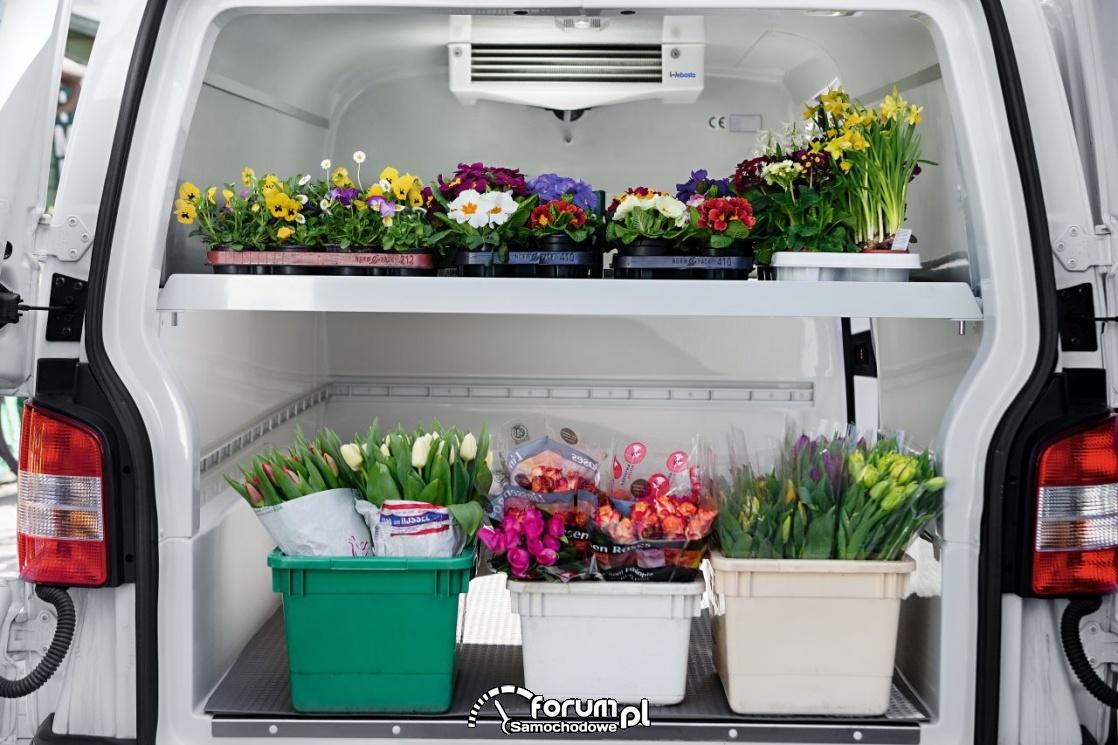 Klimatyzowana przestrzeń do przewozu kwiatów