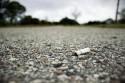 Niedopałek papierosa na drodze