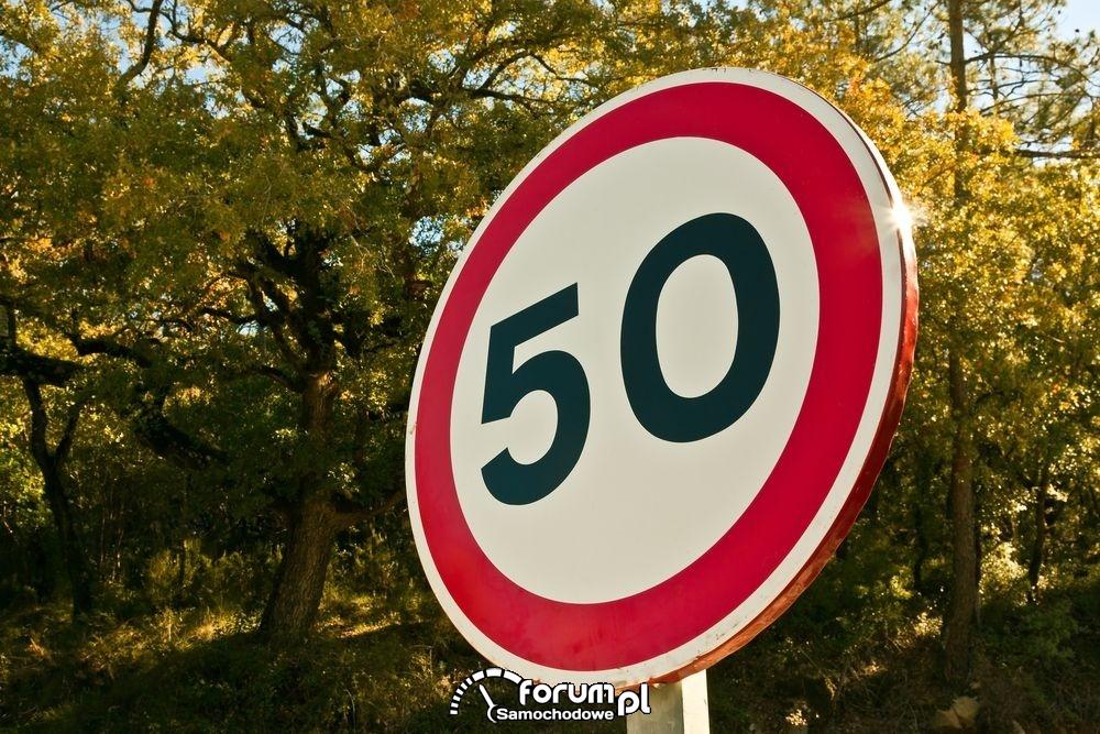 Ograniczenie prędkości do 50km/h, znak