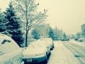 Samochody zasypane śniegiem, zima
