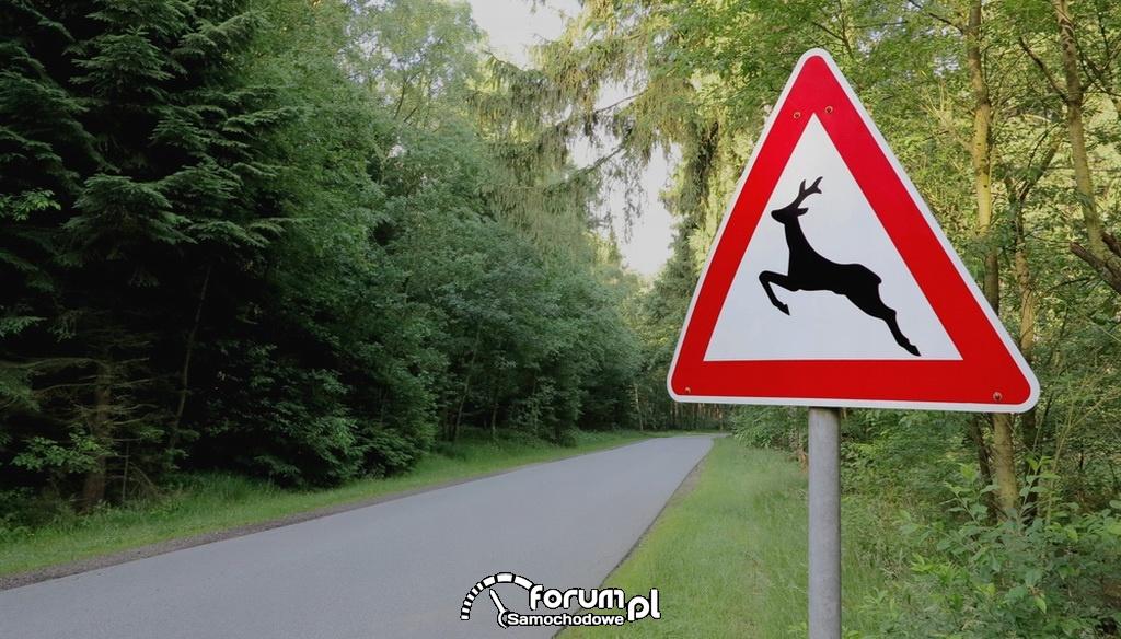 Znak - uwaga zwierzęta
