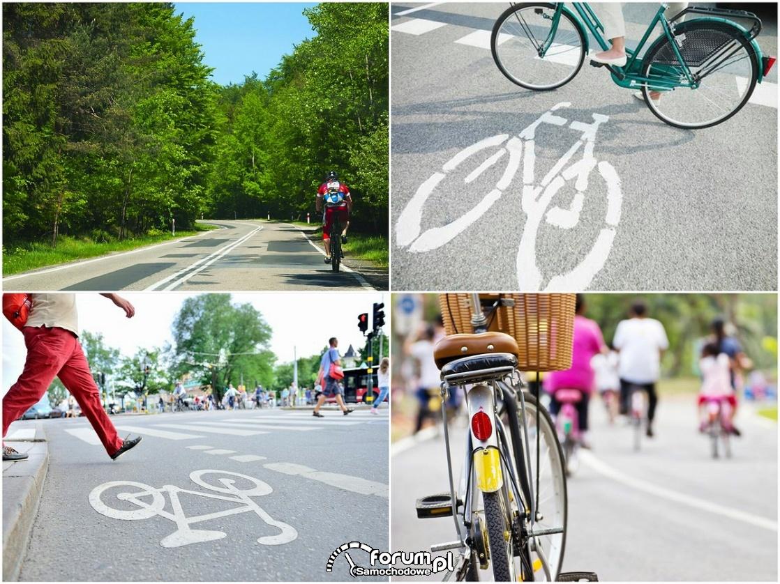 Znaki poziome - droga dla rowerów, rowerzyści