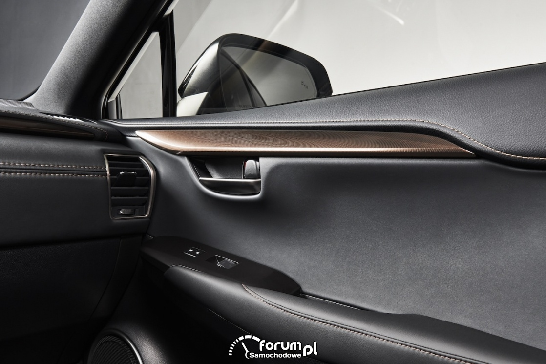 Lexus NX black, wykończenia drzwi