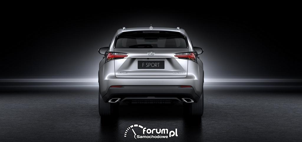 Lexus NX, tył