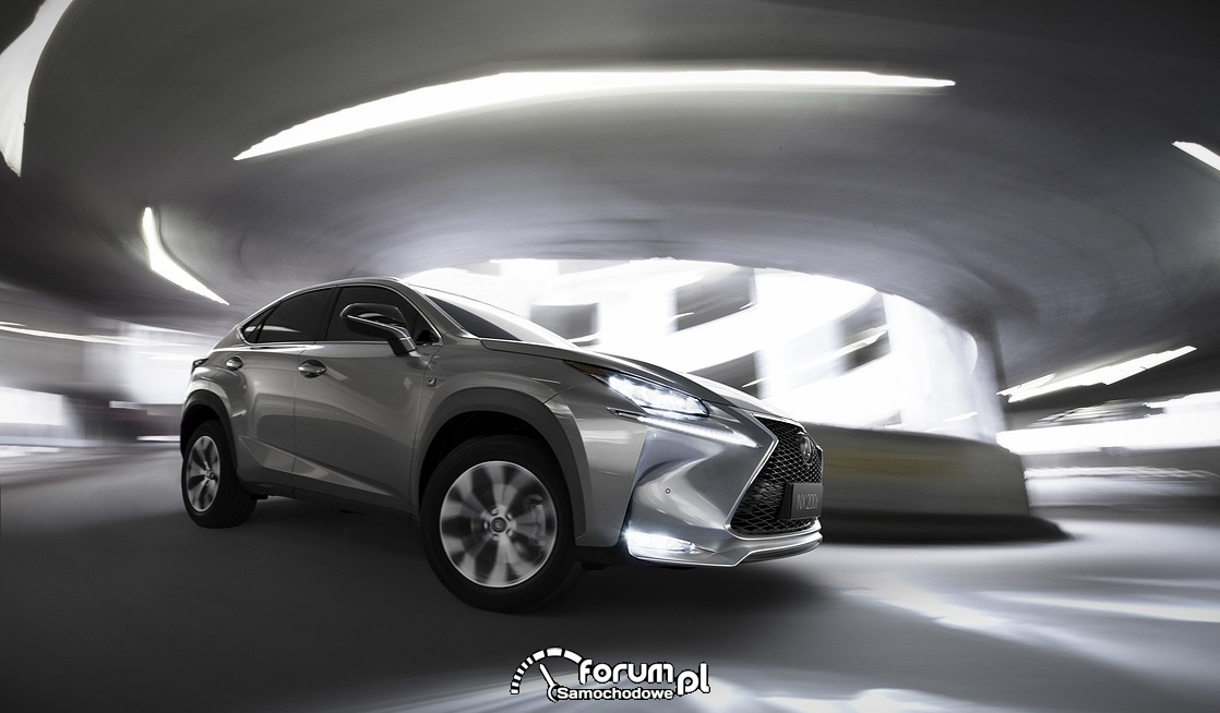 Lexus NX200t, serpentyna