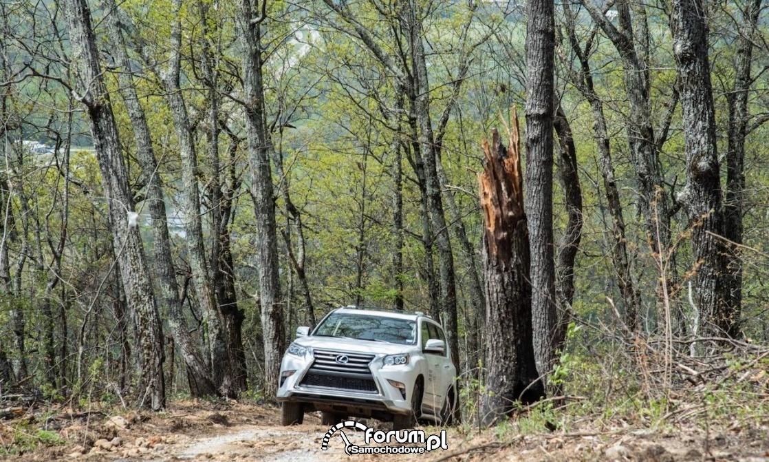 Lexus off-road adventure