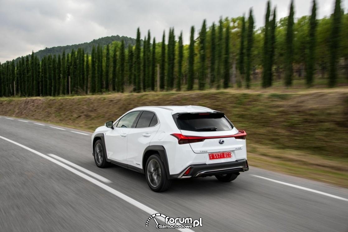 Lexus UX 250h, white, tył