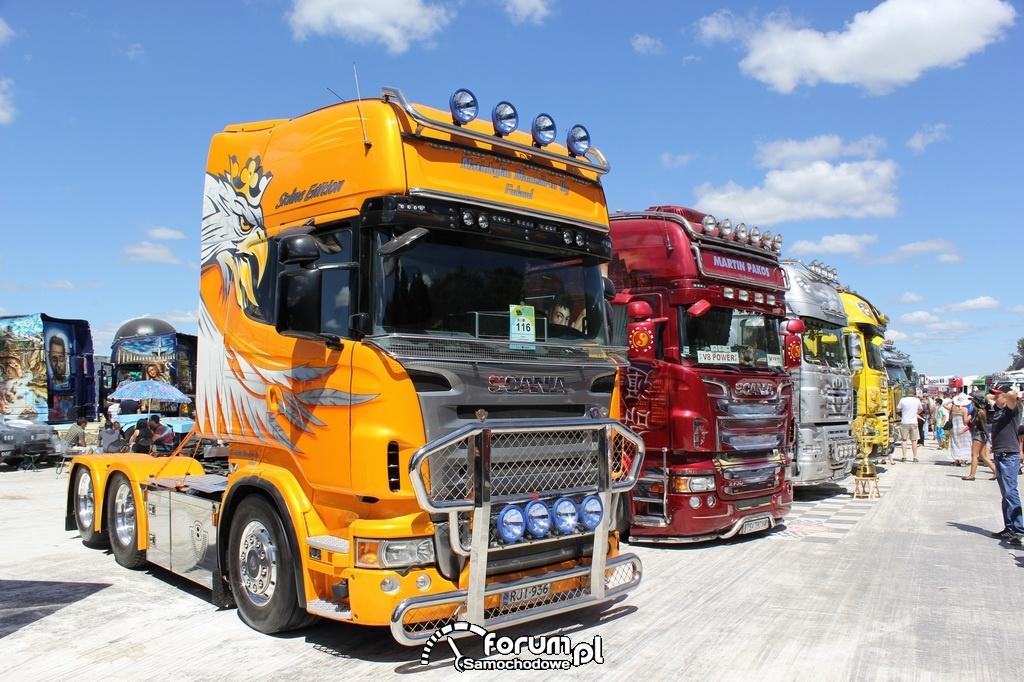 Samochody ci arowe ci gniki zdj cie Master Truck 2013 Opole