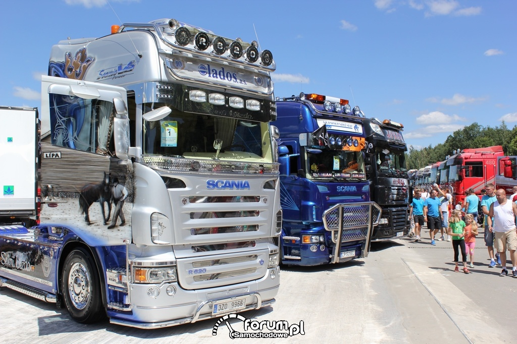 Scania R620, aerografia