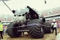 Batman, tył - Monster Truck