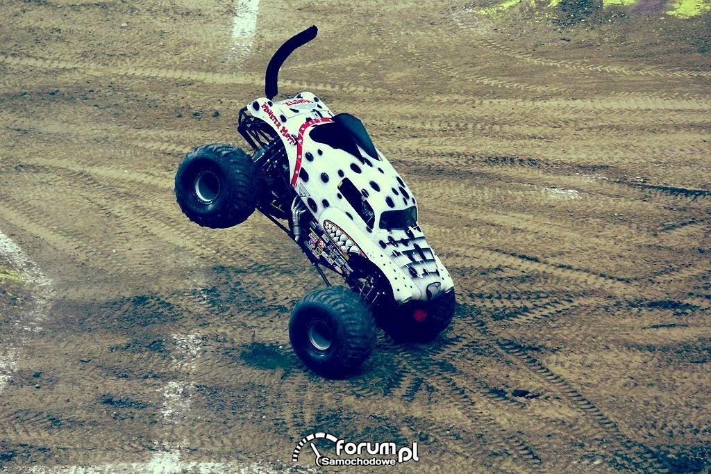 Monster Mutt Dalmatian - Monster Truck, 16