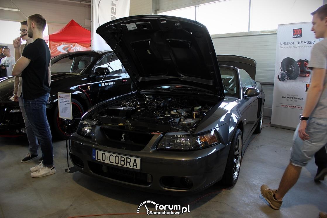 Ford SVT Cobra