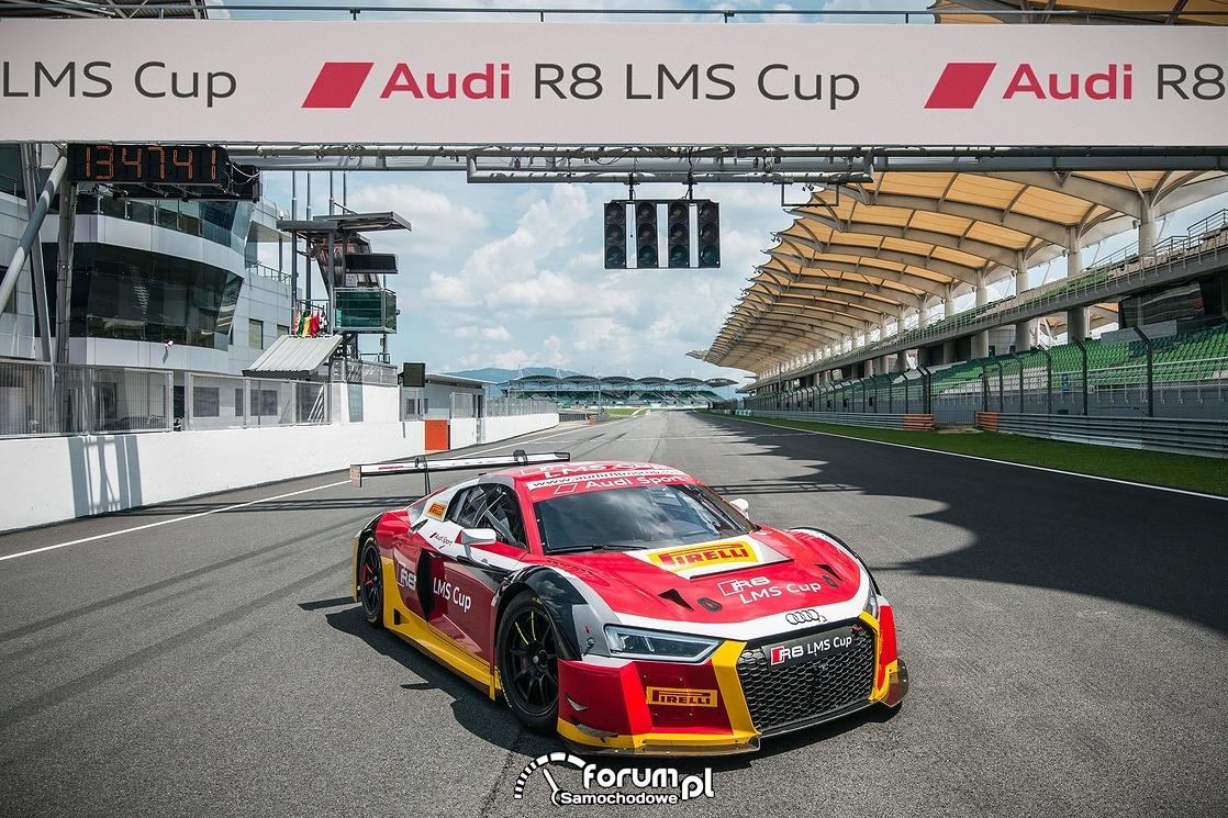 Audi R8 LMS w kategorii wyścigów GT w sezonie 2017