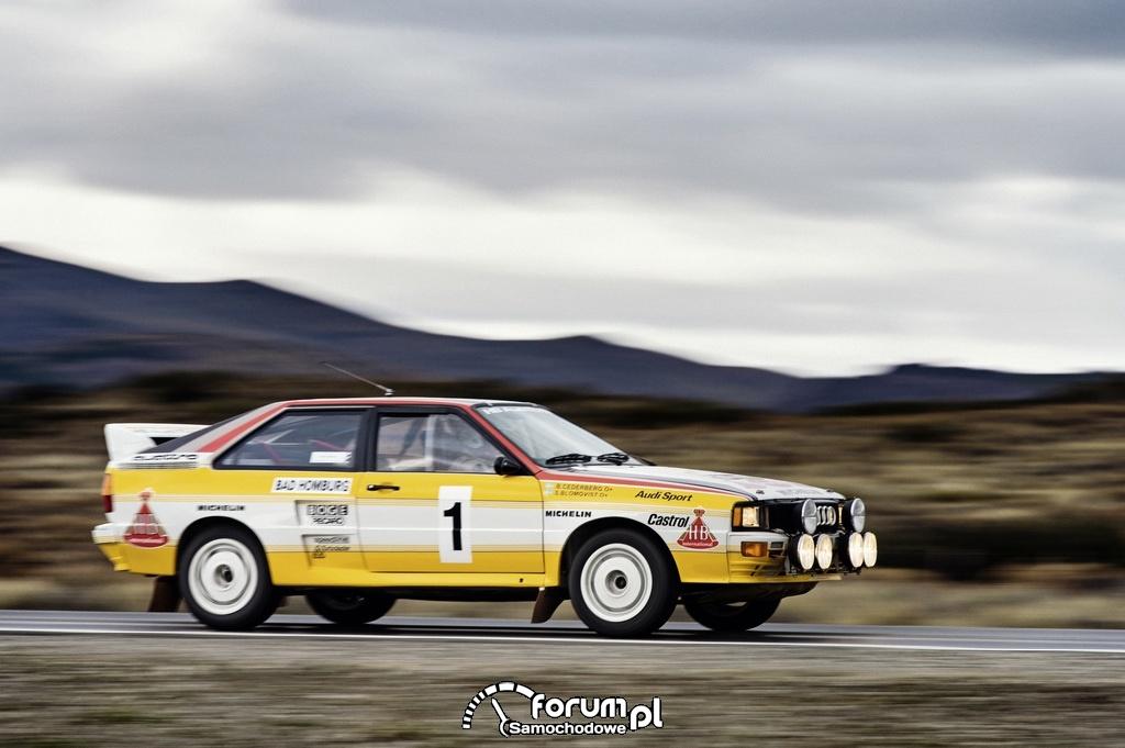 Audi Rallye quattro A2, podczas rajdu