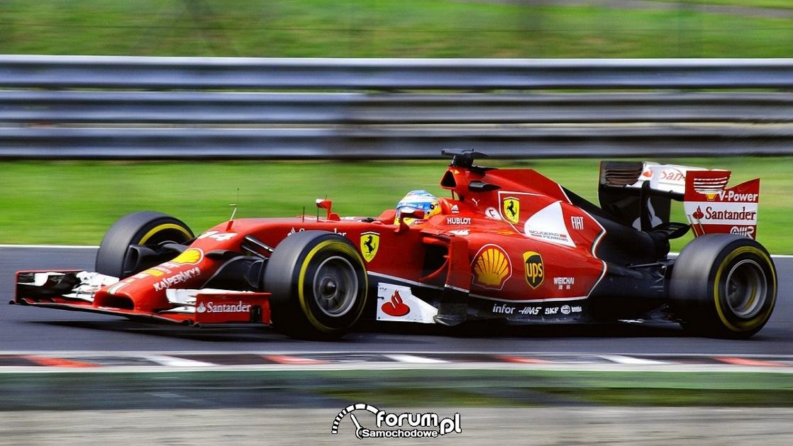 Otwarcie sezonu i wielki powrót Roberta Kubicy - Grand Prix Australii