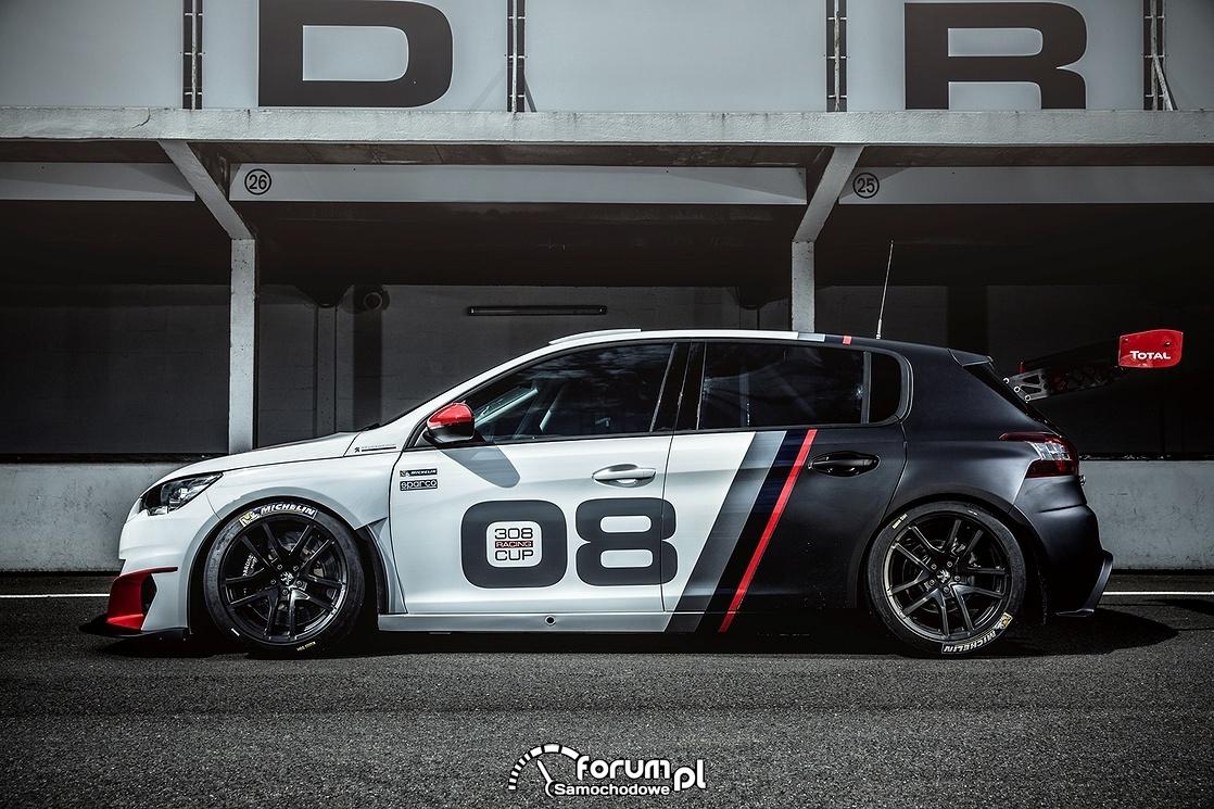 Peugeot 308 Racing Cup, bok