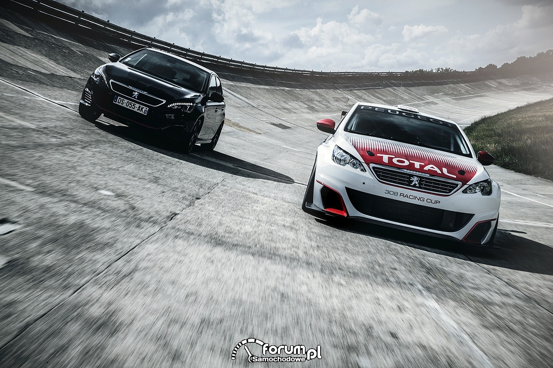 Peugeot 308 Racing Cup - wersja wyścigowa