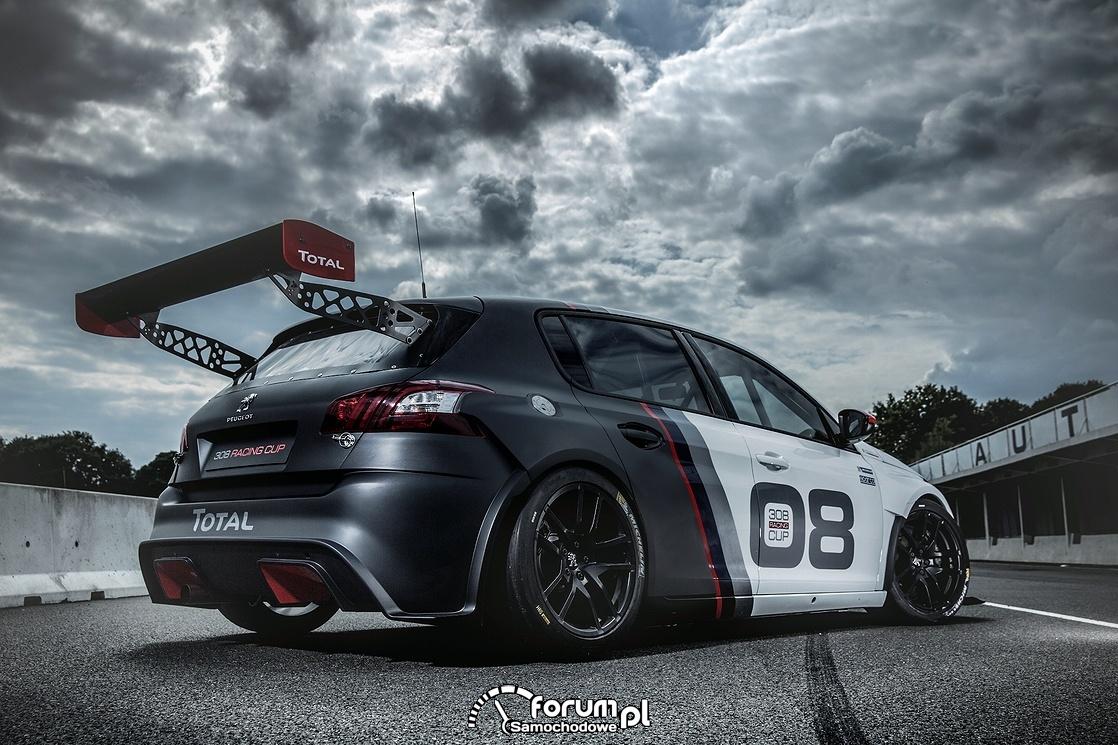 Peugeot 308 Racing Cup, tył