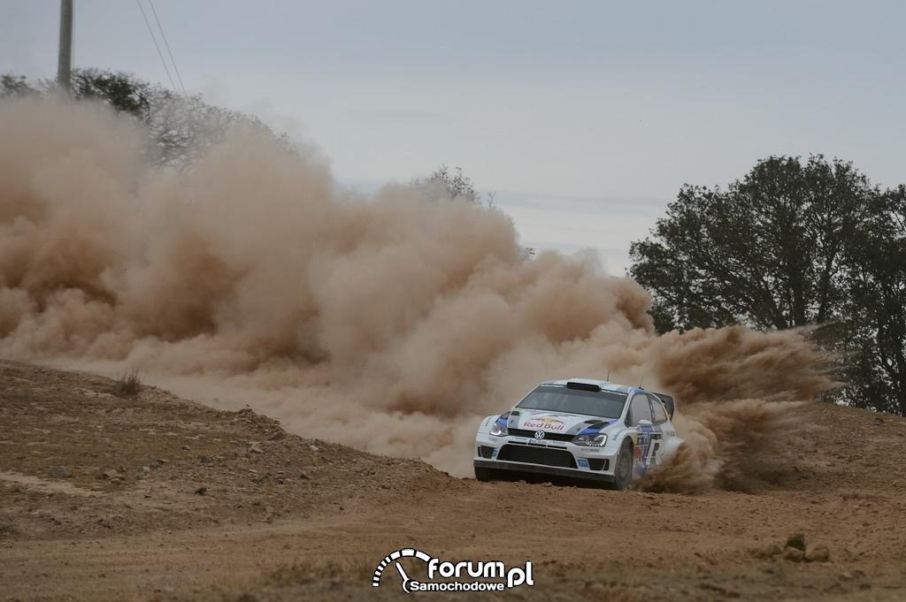 Volkswagen Polo R WRC, Rajd Meksyku, 2