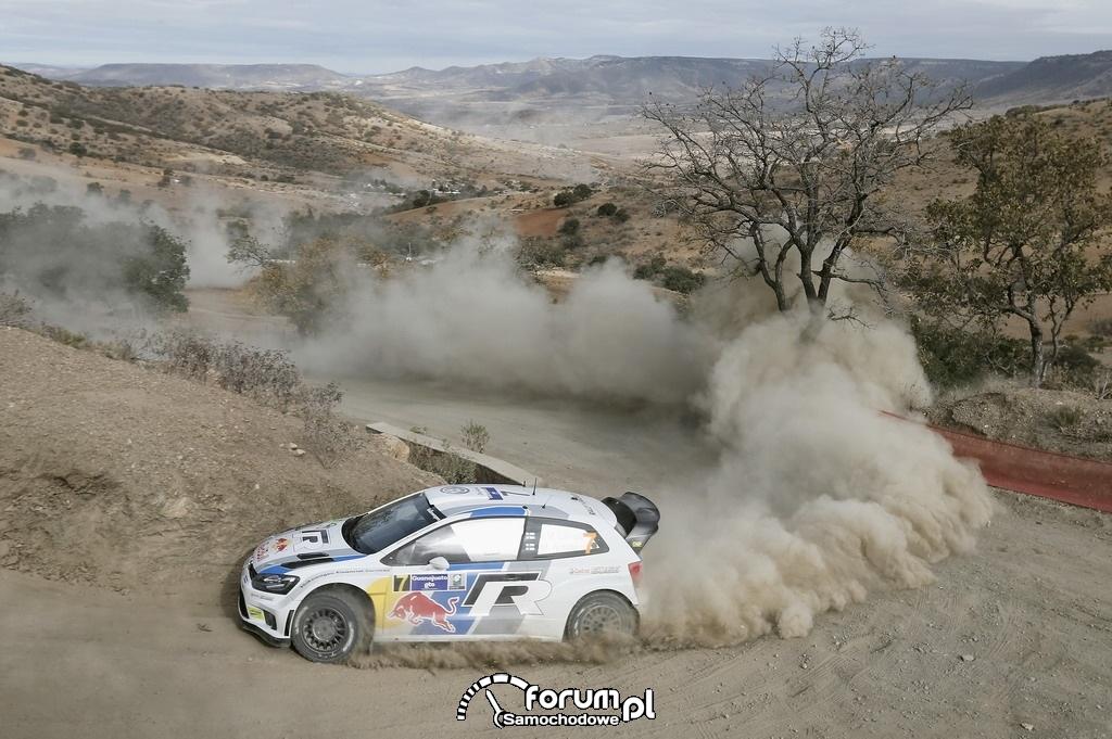 Volkswagen Polo R WRC, Rajd Meksyku, na zakręcie