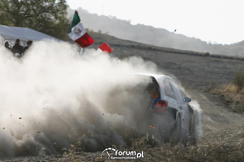 Volkswagen Polo R WRC, Rajd Meksyku, tumany kurzu na drodze