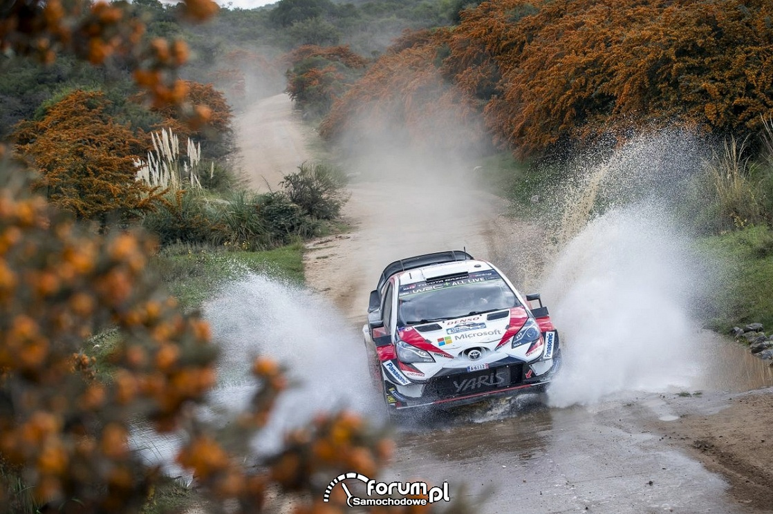 Yaris WRC, Rajd Argentyny, przejazd przez wodę